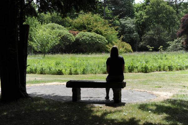 A student enjoys a view of the Leckhampton prairie garden from a bench
