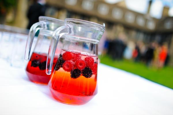 Drinks reception on Old Court | Photo credit : Jingabird Photography